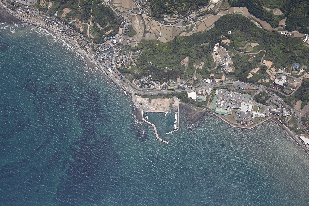 上津深江港